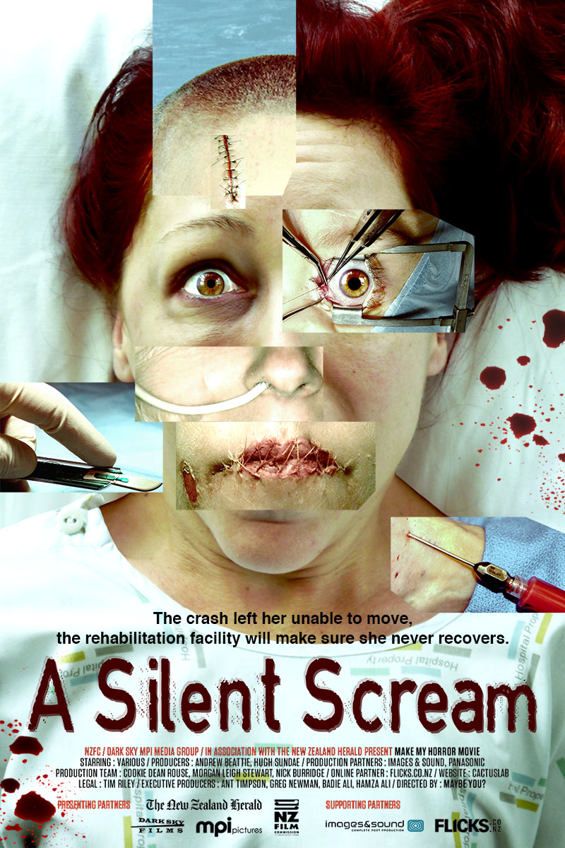 the silent scream The silent scream is a pro-life propaganda video which allegedly depicts an actual abortion via ultrasound produced in 1984, it has been used to scare the bejesus out of generations of people, including children.